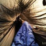 Sunlight in the hammock at midnight
