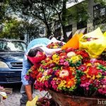 Flower peddler in Coyocan